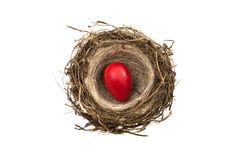 chocolate eggs in the nest isolated Royalty Free Stock Image