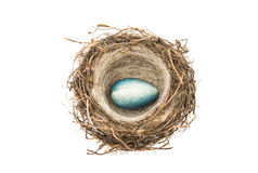 chocolate eggs in the nest isolated Royalty Free Stock Photos