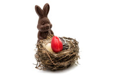 chocolate eggs in the nest isolated Stock Photography