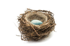 chocolate eggs in the nest isolated Royalty Free Stock Photography