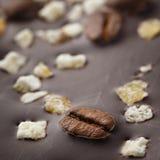 Chocolate escuro com grãos de café e frutos Preparado para o W Fotos de Stock