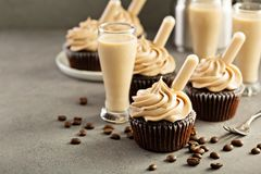 Chocolate espresso cupcakes with irish cream liquor. Infusers Stock Image