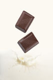 Chocolate falling into milk Royalty Free Stock Images