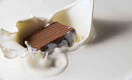 Chocolate falls in milk Royalty Free Stock Photography