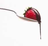 Chocolate falls from Strawberry Silver Spoon Royalty Free Stock Photography