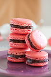 Chocolate filled macarons. Delicious macarons filled with chocolate ganache Royalty Free Stock Image
