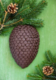 Chocolate fir cone Royalty Free Stock Photos