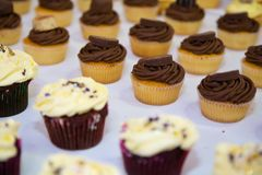 Vanilla topped cupcakes on display. Chocolate flavoured cupcakes on display Stock Images
