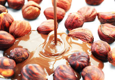 Chocolate flow Royalty Free Stock Images