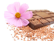 Chocolate with flower Royalty Free Stock Photos