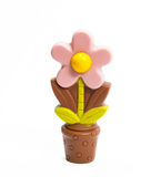 Chocolate flower Royalty Free Stock Photography