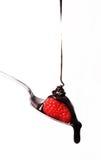 Chocolate flows Raspberry Food Fruit White Back Royalty Free Stock Image