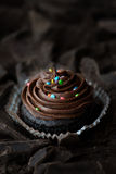Chocolate fondant on chocolate background. Close-up view royalty free stock photos