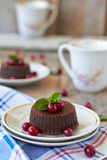 Chocolate fondant. Lava cake with cranberry and mint Stock Images