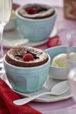 Chocolate fondant with raspberries. And vanilla ice creams royalty free stock image