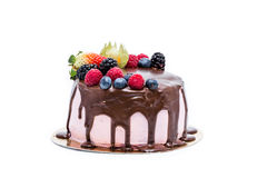 Chocolate forest fruit cake stock images