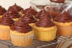 Chocolate Frosted Cupcakes Stock Photos