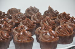 Free Chocolate Frosted Cupcakes Stock Image - 75652371