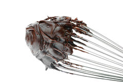 Chocolate Frosting. A whisk with chocolate frosting isolated on a white background stock photo