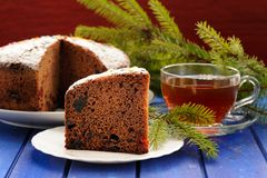 Chocolate fruit cake with black tea and green fur tree branch on Stock Image