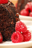 Chocolate fudge cake with raspberries Stock Image