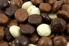 Chocolate gingernuts, pepernoten, in closeup Stock Image
