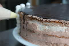 Chocolate glaze. Layers of cake with chocolate glaze Stock Images
