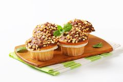 Chocolate glazed muffins Royalty Free Stock Photos