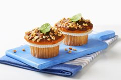 Chocolate glazed muffins Stock Photo