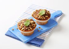 Chocolate glazed muffins Royalty Free Stock Image
