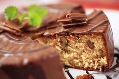 Chocolate glazed nut cake Stock Image
