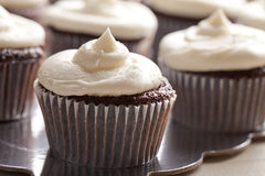 Chocolate gourmet cupcakes Royalty Free Stock Photography