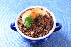 Chocolate granola Stock Images