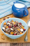 Chocolate granola with nuts and dried fruit Royalty Free Stock Photos