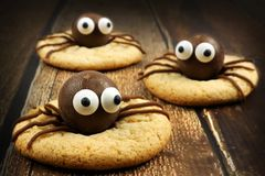 Chocolate Halloween spider cookies on rustic wood Stock Photo