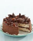 Chocolate and hazelnut cake Stock Photos