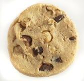 Chocolate and hazelnut cookie stock image