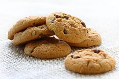 Chocolate and hazelnut cookies Stock Photos