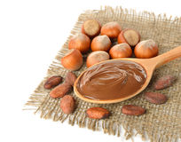 Chocolate, hazelnuts and cocoa beans Stock Photos