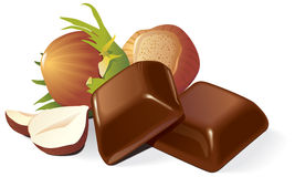 Chocolate and hazelnuts composition Stock Image