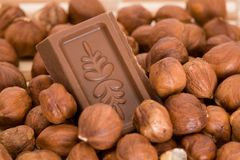 Chocolate in hazenuts stock images