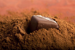 Chocolate on a heap od cacao Stock Photography