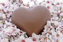 Chocolate heart in a bed of flowers Stock Photo