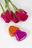 Chocolate heart and rose in the Valentine's Day. White background stock images