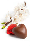 Chocolate in heart shape Stock Image