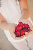 Chocolate hearts in hand Stock Images