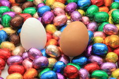 Chocolate and hen easter eggs Royalty Free Stock Photo