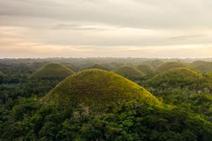 Chocolate Hill in Bohol Island, Philippine. The Chocolate Hills are a geological formation in the Bohol province of the Philippines Royalty Free Stock Image