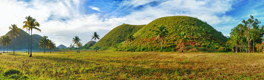Chocolate Hills. Panorama of The Chocolate Hills. Bohol, Philippines Stock Photos