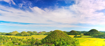 Chocolate Hills Royalty Free Stock Image